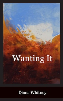 Wanting it - front cover 3-18-14 w