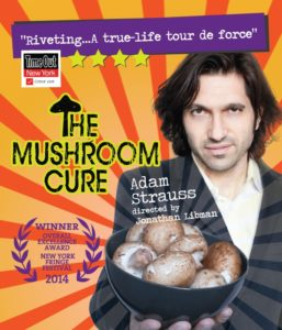 Adam Strauss returns: The Mushroom Cure @ Next Stage | Putney | Vermont | United States